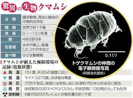 20100517-00000031-san-soci-view-000.jpg