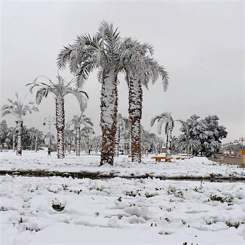 rafha-snow-02.jpg