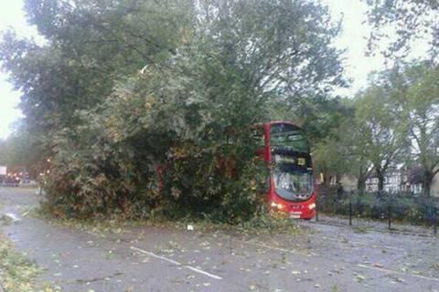3-bus.jpg
