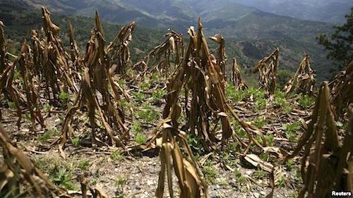 Guatemala-drought-2015.jpg