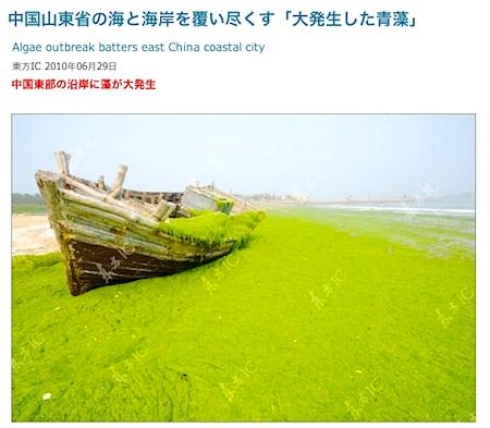 algae-2010-01.jpg