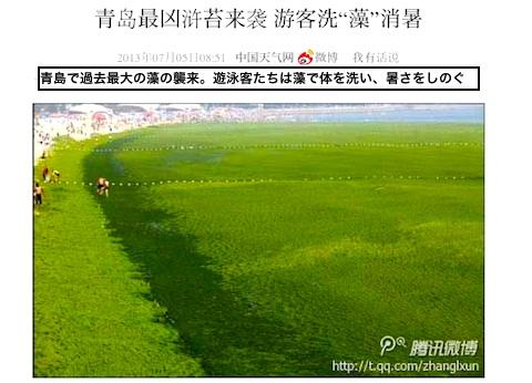 algae-top.jpg
