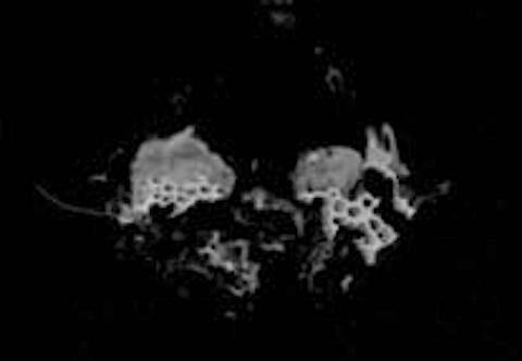 apollo17-ufo-s2.jpg