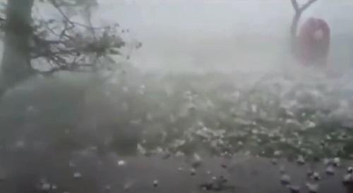 hail-after.jpg