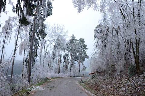 ice-rain-01.jpg