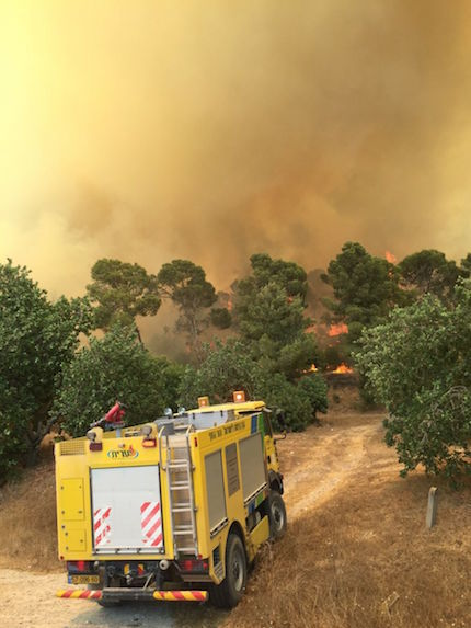 israeli-fire-02.jpg