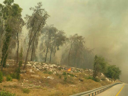 israeli-fire-03.jpg