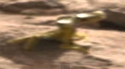 lizard-mars.JPG
