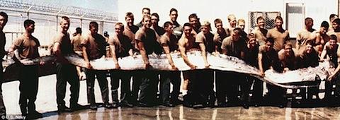 oar-1996.jpg