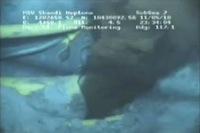 oil-leak-freeze-fram-from-bp-video.jpg