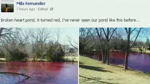 red-pond1.jpg