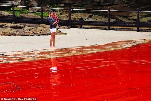 red-rain-2012-01.jpg