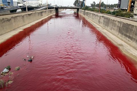 river-blood-01.jpg