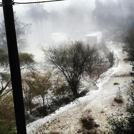 saudi-snow-001.jpg