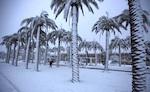 saudi-snow-s1.jpg