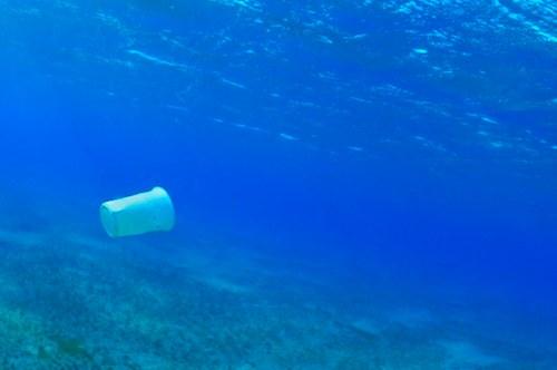 sea-plastic.jpg