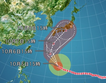 typho-18.jpg